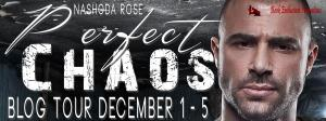 Perfect Chaos Blog Tour Banner